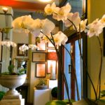 Fabulous Flowers And Vignettes Abound At The Farmers Wife