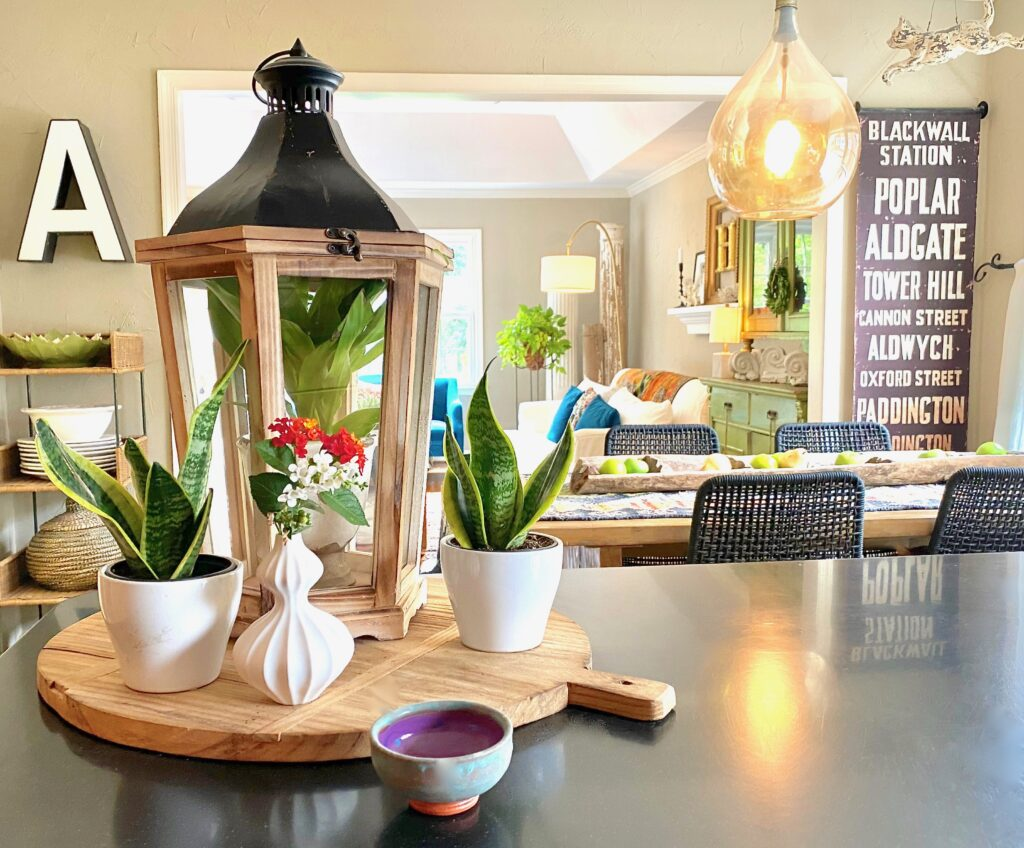 Wooden lantern with snake plants on kitchen counter.